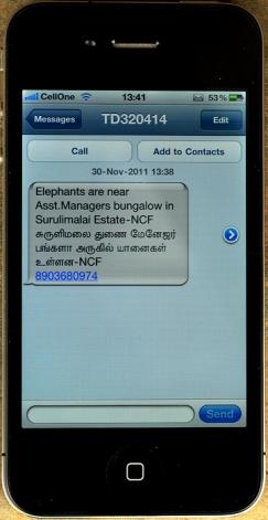 Elephant sms_GAN4551_700