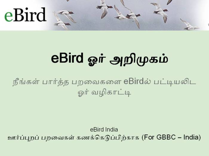 eBird Introduction_Tamil