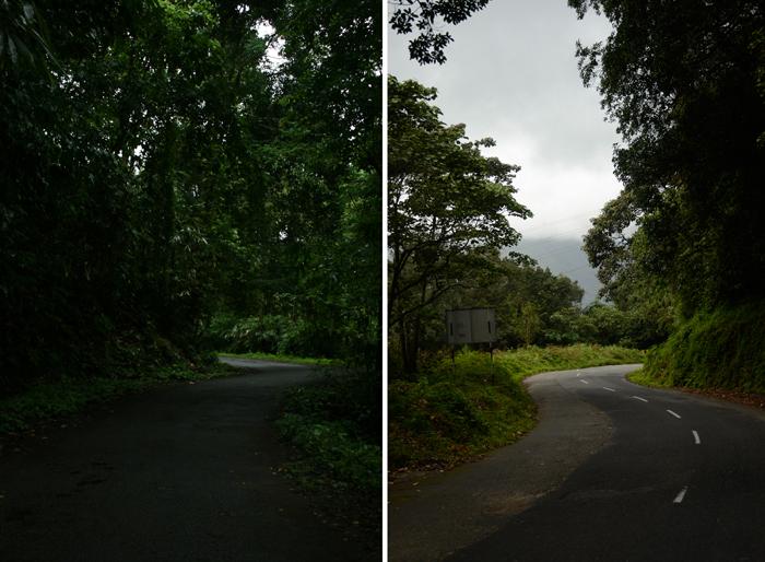 இருபுறமும் மரங்கள் அடர்ந்த காட்டு வழியே செல்லும் நல்ல சாலை. சாலையோர மரங்களில்லாத மோசமான காட்டுச் சாலை.