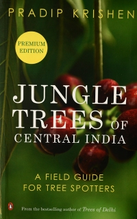 jungle trees of central india