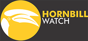 hornbill-logo